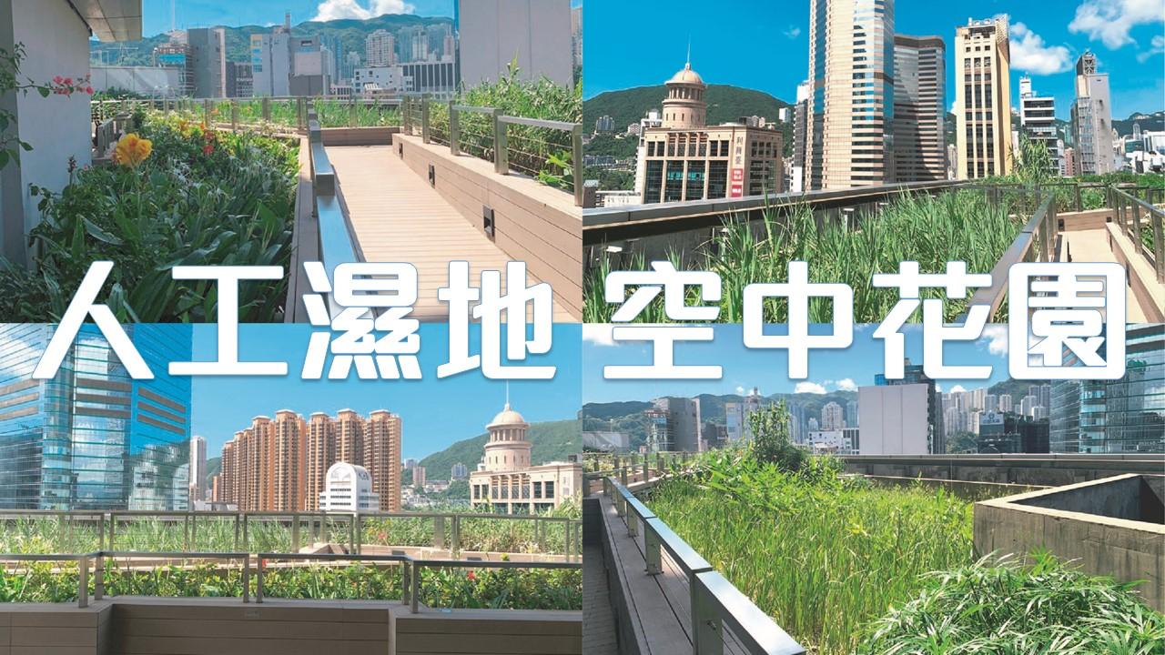 【商廈綠化】全港唯一人工濕地空中花園 | 市區環保建築 | 活用生活廢水 | 灰水處理系統 Grey Water Recycling